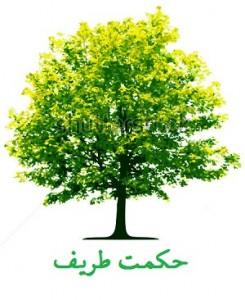 stock-vector-tree-vector-9198520